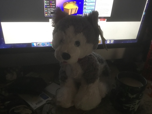 A Build-A-Bear Husky